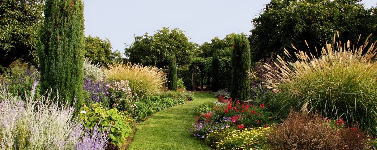 Professional garden services tree surgeons lawn care for Home gardening services